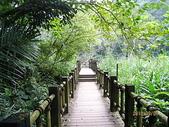 南庄、通霄地區景點:南庄蓬萊仙溪護魚步道 017.jpg
