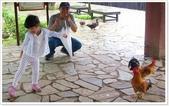 大溪老街‧公園、八德埤塘生態公園、大古山步道:八德埤塘生態公園-1_026.jpg