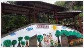 尖石鄉、秀巒村、青蛙石、薰衣草森林:尖石青蛙石-1_033.JPG