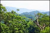 三峽風景區:紫微聖母環山步道探路_011.jpg