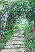基隆旅遊、情人湖、海興森林步道、七堵車站、紅淡山:大牛稠登山步道_003.jpg