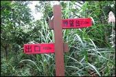 基隆旅遊、情人湖、海興森林步道、七堵車站、紅淡山:大牛稠登山步道_009.JPG