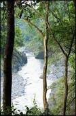 烏來風景區:烏來信賢步道_015.jpg