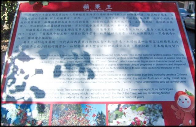 中部旅遊:福壽山農場-1_002.jpg