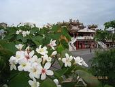 鄭漢步道、龍昇湖、將軍牛乳廠、頭屋三窪坑步道:頭屋三窪坑步道 161