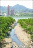 淡水、八里地區風景區:金色水岸自行車步道-A_043.jpg