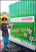 中部旅遊:楓之谷_012.1.jpg