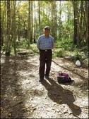 尖石鄉、秀巒村、青蛙石、薰衣草森林:秀巒楓樹林_125.jpg