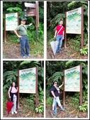 烏來風景區:內洞森林遊樂區-2_1001.jpg