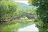 大台北地區:雙溪公園大王蓮_017.jpg