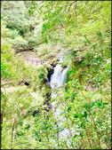 三峽風景區:滿月圖森林遊樂區-2_043.jpg