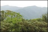 基隆旅遊、情人湖、海興森林步道、七堵車站、紅淡山:大牛稠登山步道_039.jpg