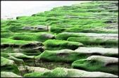 三芝、石門地區:老梅綠石槽_605.jpg