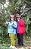 基隆旅遊、情人湖、海興森林步道、七堵車站、紅淡山:大牛稠登山步道-1_007.jpg