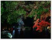 大陸桂林五日遊:夜遊兩江4湖-6271.JPG