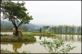 三芝、石門地區:三芝水中央_026.jpg