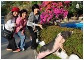 尖石鄉、秀巒村、青蛙石、薰衣草森林:花開了休閒農園-1_002.jpg