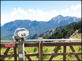 中部旅遊:合歡山_046.jpg