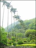 三峽風景區:三峽行修宮_001.jpg