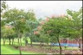 大溪老街‧公園、八德埤塘生態公園、大古山步道:大溪河濱公園_010.jpg