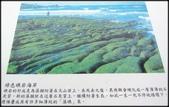 三芝、石門地區:老梅綠石槽-1_012.jpg