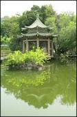 大台北地區:雙溪公園大王蓮_009.jpg