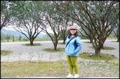 基隆旅遊、情人湖、海興森林步道、七堵車站、紅淡山:大牛稠登山步道_066.jpg