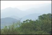 基隆旅遊、情人湖、海興森林步道、七堵車站、紅淡山:大牛稠登山步道_037.jpg