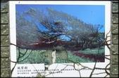 富貴角燈塔步道、麟山鼻步道、貝殼廟:富貴角公園_022.jpg