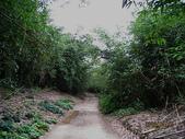 鄭漢步道、龍昇湖、將軍牛乳廠、頭屋三窪坑步道:頭屋三窪坑步道 097