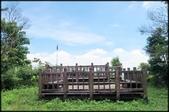 三峽風景區:紫微天后宮步道探路_097.jpg