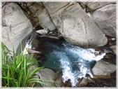 尖石鄉、秀巒村、青蛙石、薰衣草森林:青蛙石_053.JPG