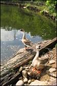 平溪風景區地區、荖寮坑步道、暖東苗圃、暖暖親水公園:暖東苗圃_011.JPG