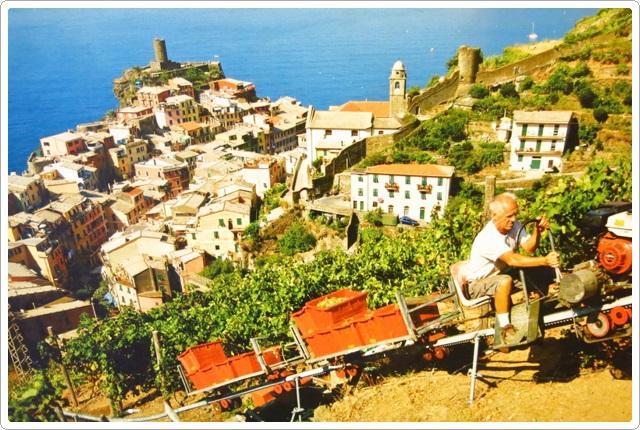 歐洲之旅:義大利9日遊-3_106.jpg