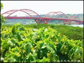 淡水、八里地區風景區:金色水岸自行車步道_026.jpg