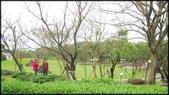 三芝、石門地區:三芝遊客服務中心-1_002.jpg