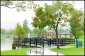 大溪老街‧公園、八德埤塘生態公園、大古山步道:大溪河濱公園_022.jpg