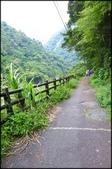 烏來風景區:烏來信賢步道_004.jpg