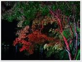 大陸桂林五日遊:夜遊兩江4湖-6270.jpg