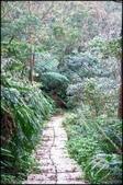 基隆旅遊、情人湖、海興森林步道、七堵車站、紅淡山:大牛稠登山步道_044.jpg