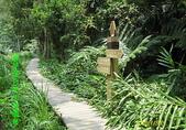 南庄、通霄地區景點:南庄-蓬萊溪自然生態園區04.jpg