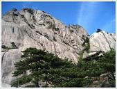 大陸黃山六日遊:大陸黃山六日遊_4645.JPG