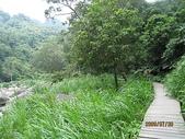 南庄、通霄地區景點:蓬萊仙溪秋茂園 027.jpg