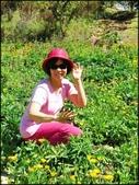 中部旅遊:福壽山農場_060.jpg