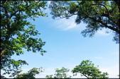 三峽風景區:紫微聖母環山步道探路_007.jpg