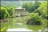 大台北地區:雙溪公園大王蓮_002.jpg
