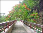 新竹風景區:水濂洞步道_007.jpg