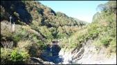 尖石鄉、秀巒村、青蛙石、薰衣草森林:秀巒楓樹林-1_006.jpg