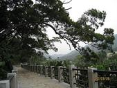 大溪遊客中心、頭寮生態步、道衛兵、11指古道:頭寮生態步道 027
