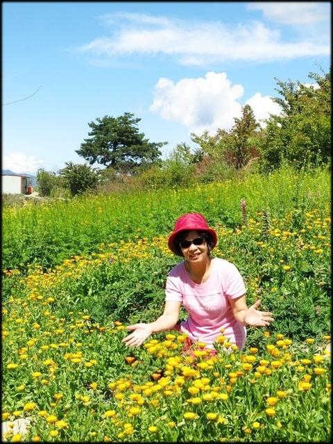 中部旅遊:福壽山農場_058.jpg